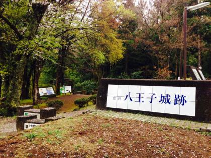 20150412hachioji_1_convert_20150412205630.jpg