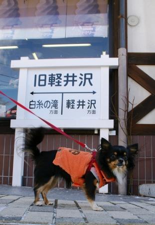DSC06988軽井沢