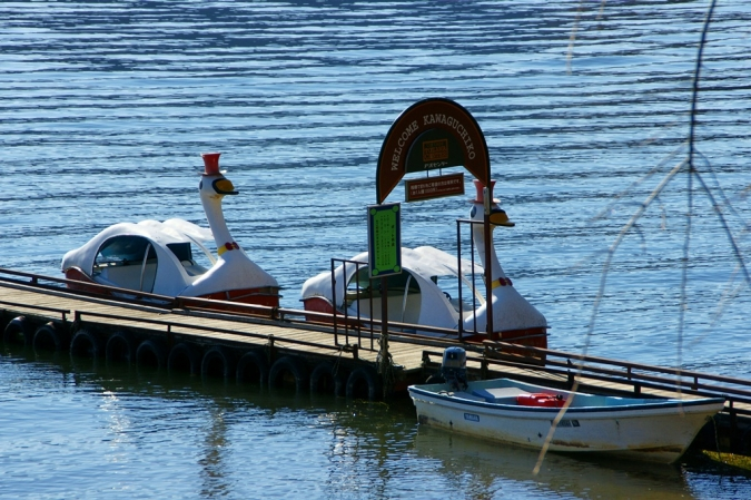 DSC05612河口湖