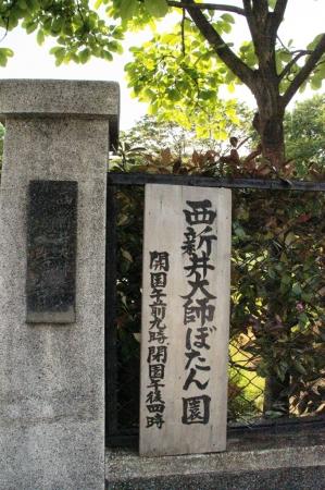 DSC01636西新井大師