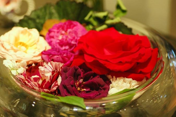 DSC03392薔薇