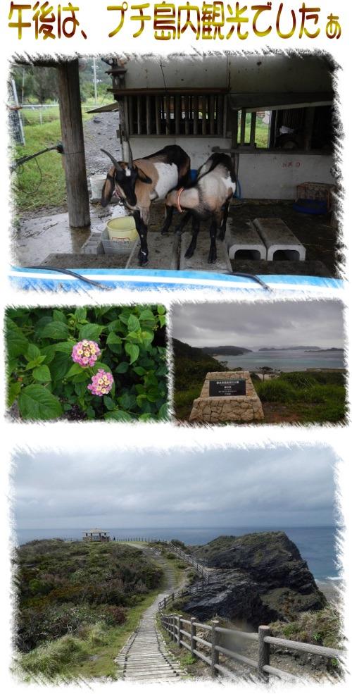 プチ島内観光