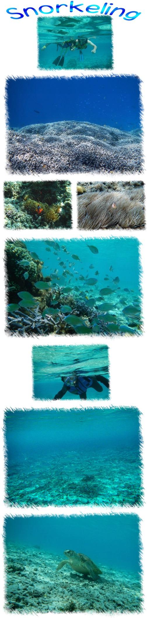 Snorkeling_201504152051568d3.jpg