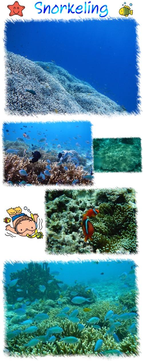 Snorkeling_201505271015131a5.jpg