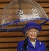 傘ネイビー