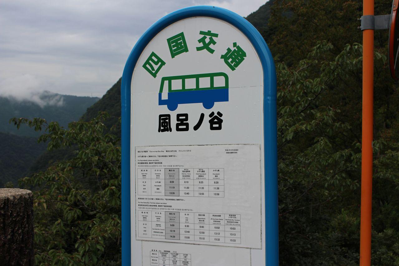 祖谷渓の小便小僧-4