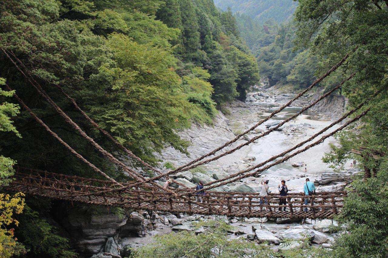 かずら橋-1