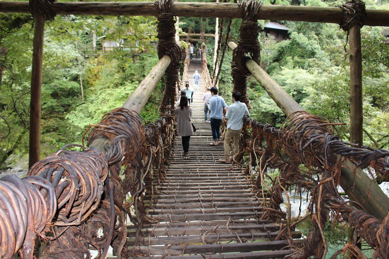 かずら橋-2