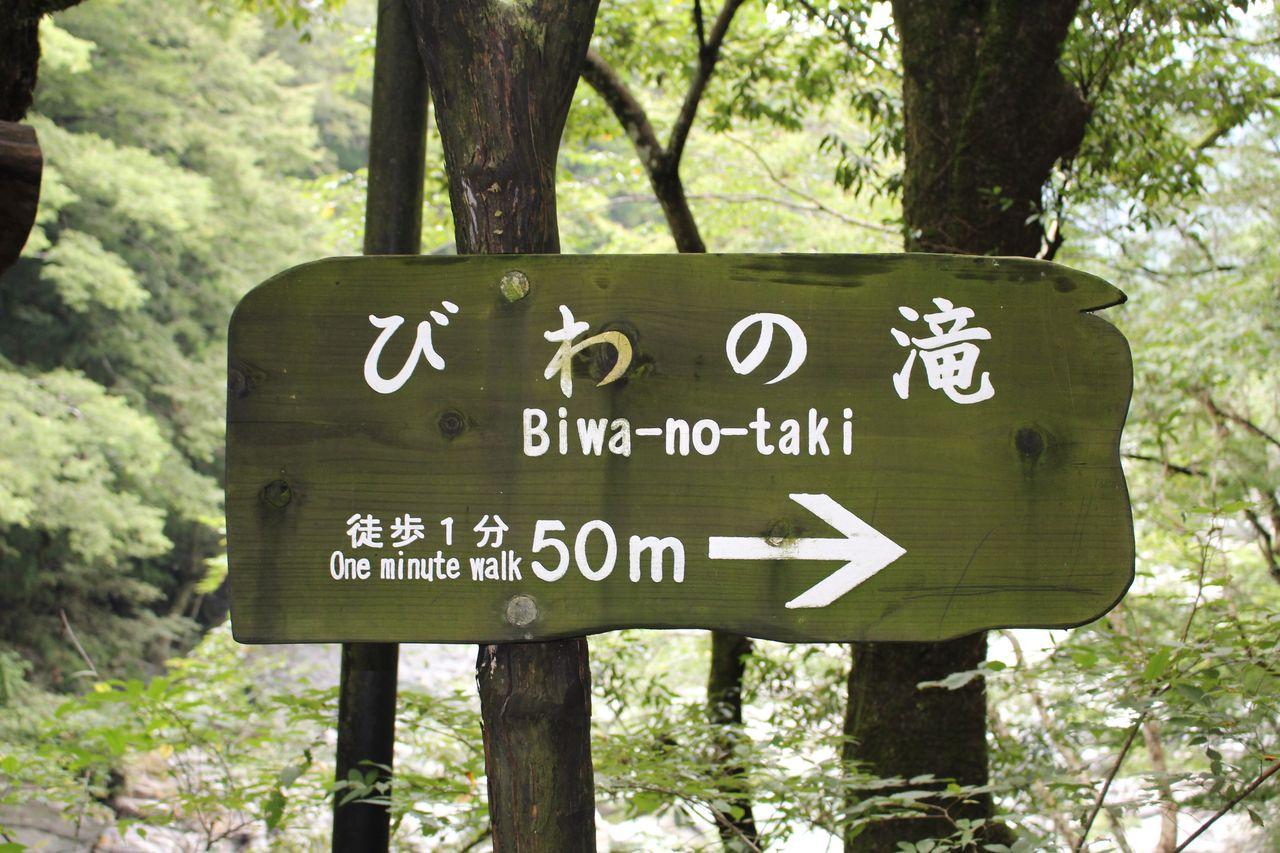 かずら橋(琵琶の滝)-20