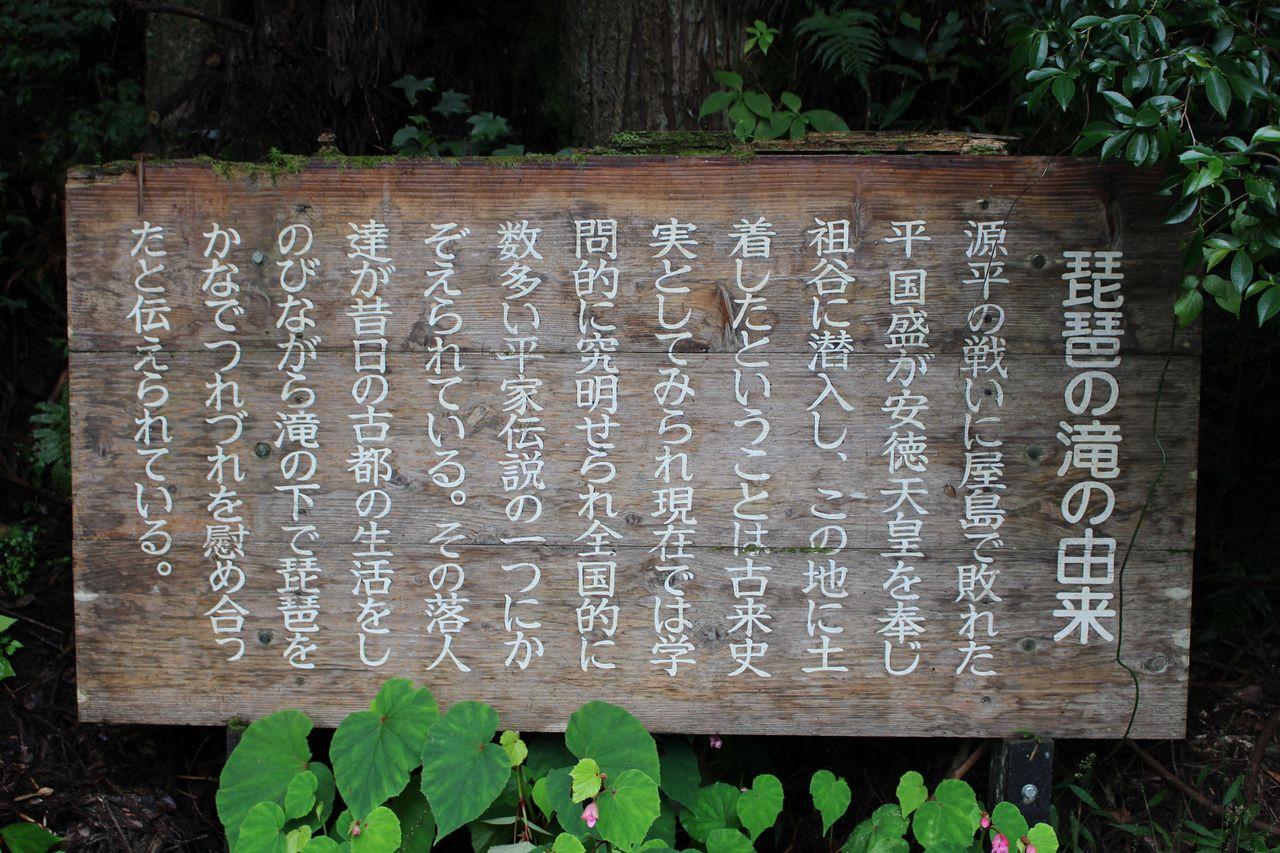 かずら橋(琵琶の滝)-21