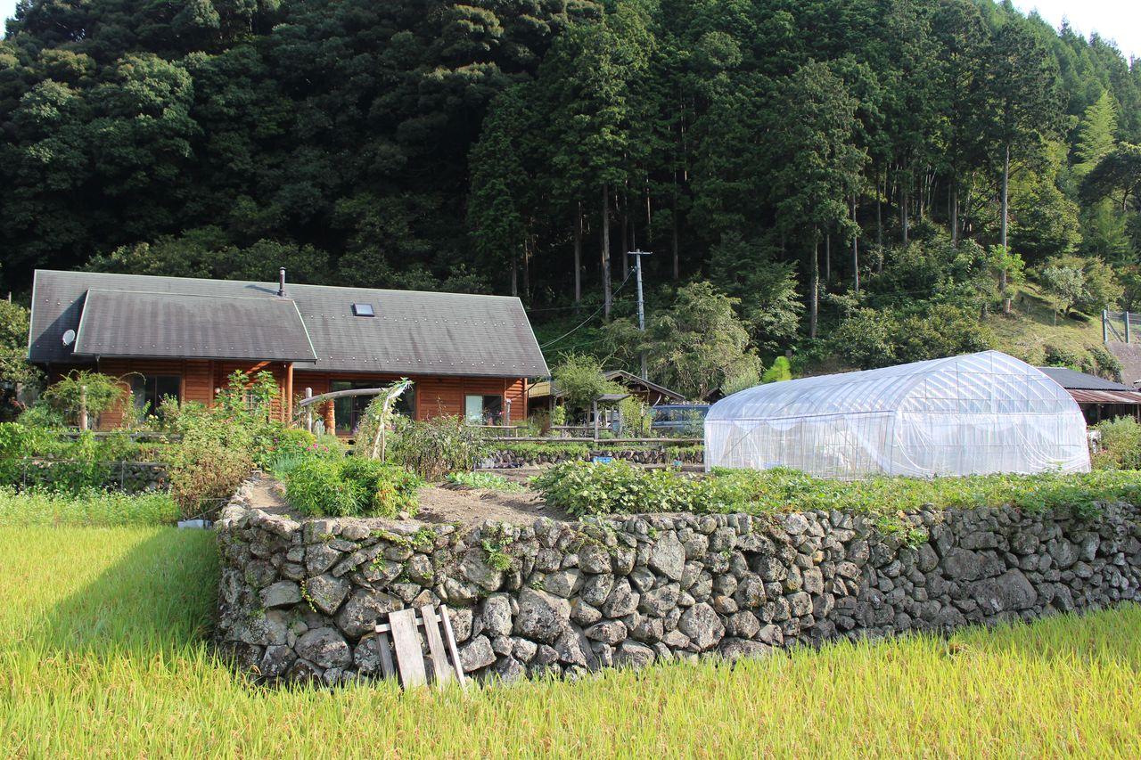 ログ 杉の家-1