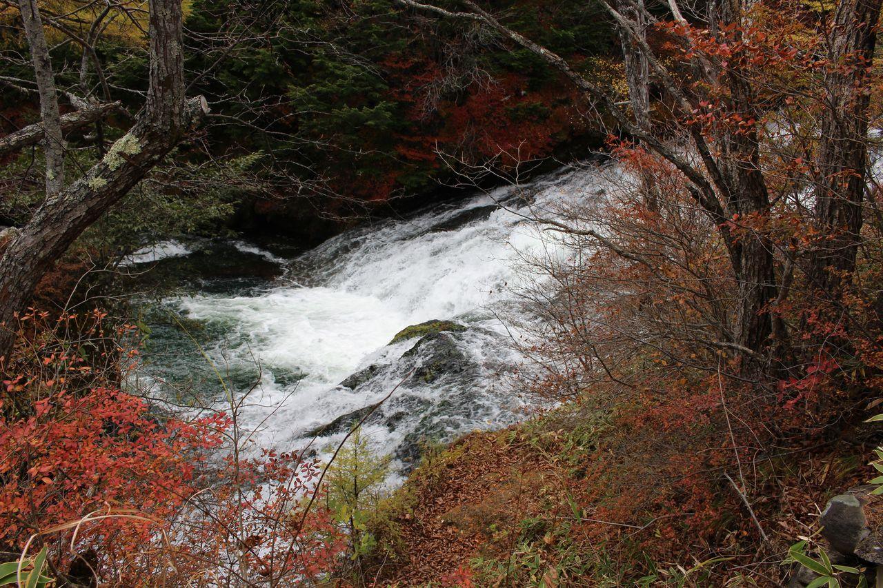 竜頭の滝-12