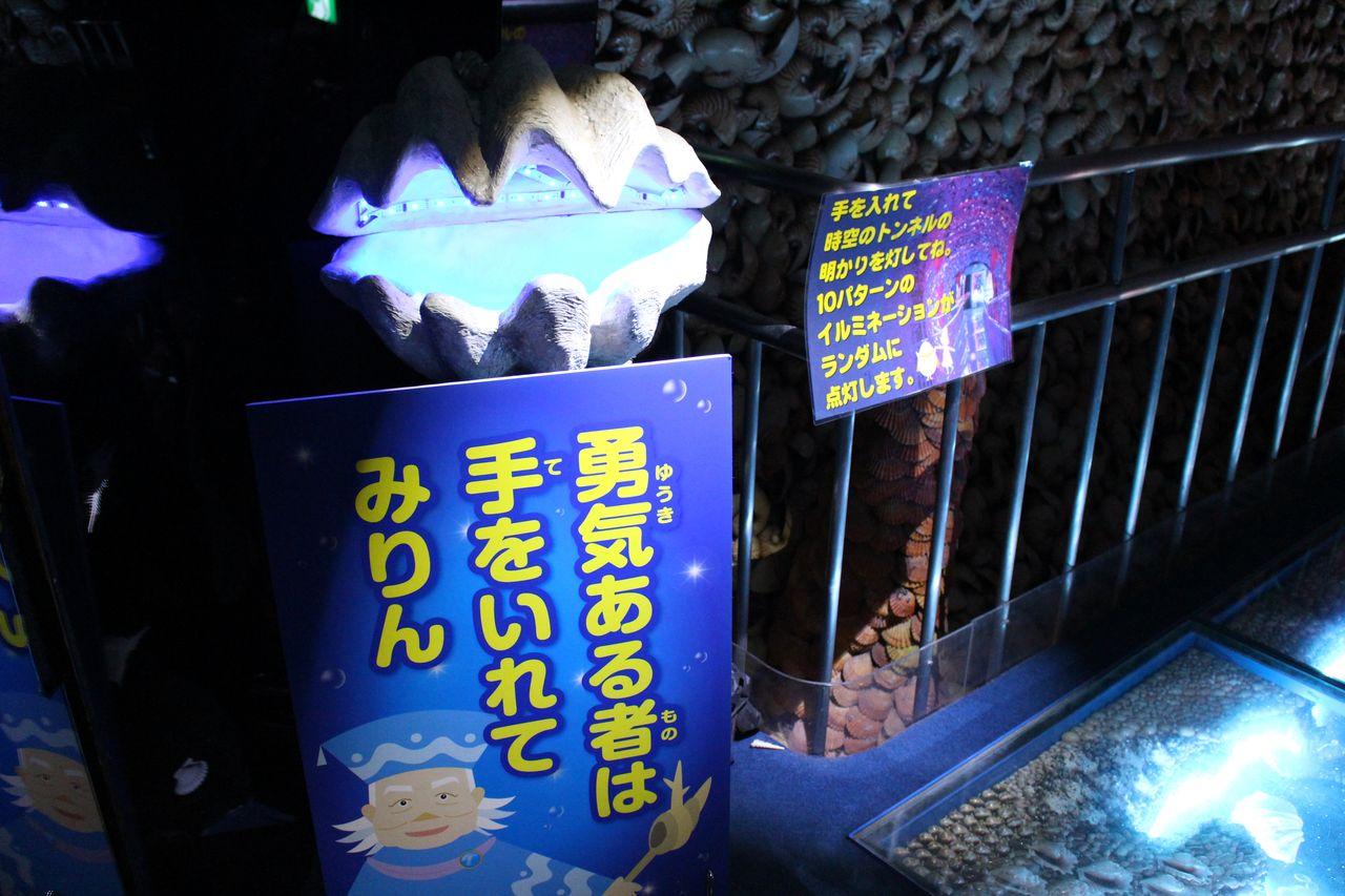 竹島ファンタジー館-14