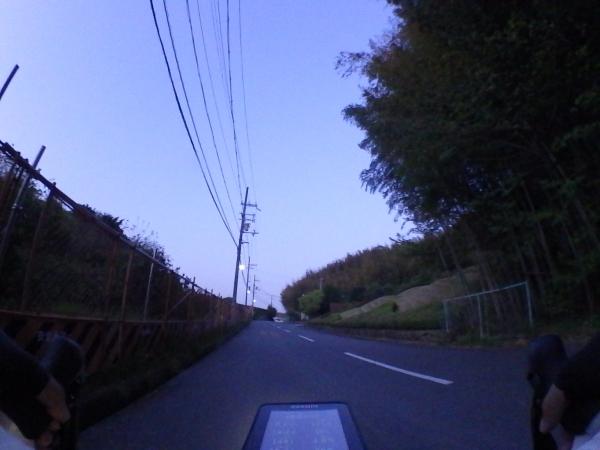 SHIM0665.jpg