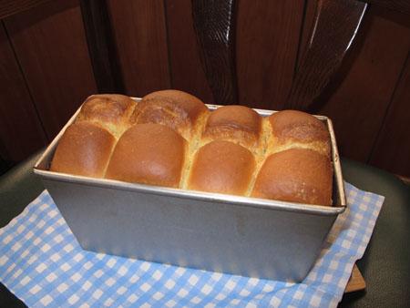 2月1日 食パン 2