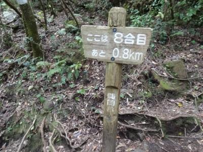 開聞 (74)
