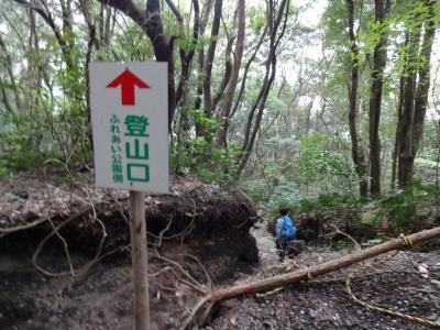 開聞 (155)