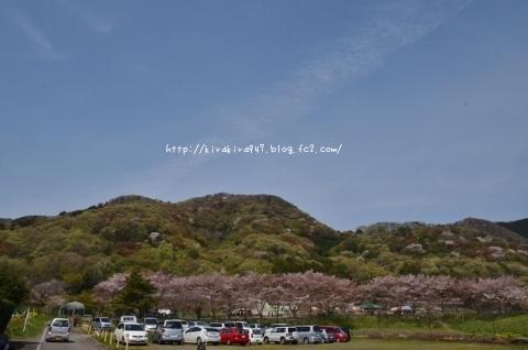 里山で 七つの体験