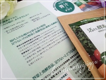 ikita-011_Fotor.jpg