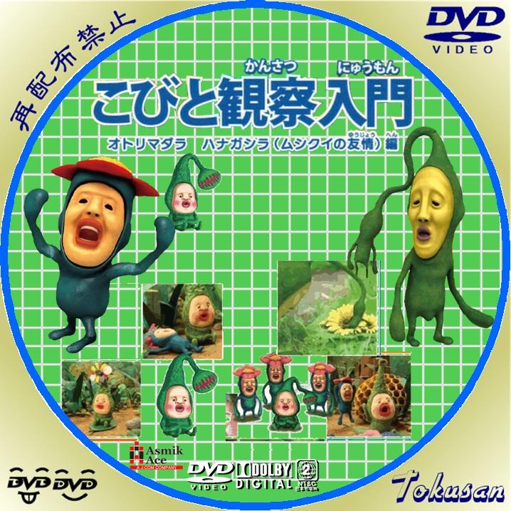 こびと観察入門~オトリマダラ ハナガシラ(ムシクイの友情)編