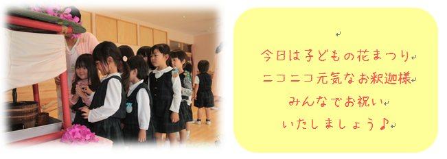 5_201505151712255a3.jpg
