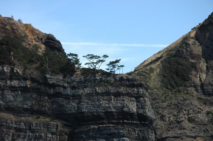 鹿島断崖 2