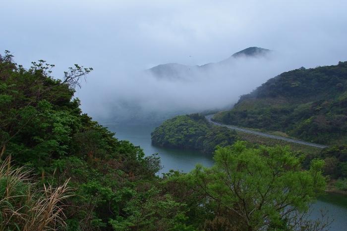 霧のかざき池 1