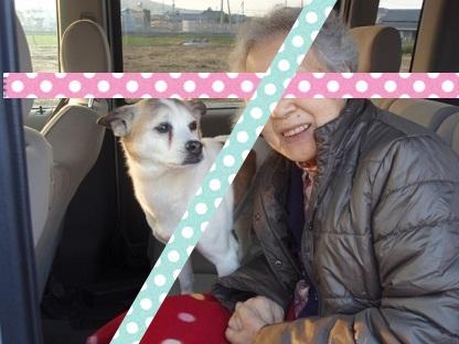 サンディとおばあちゃん