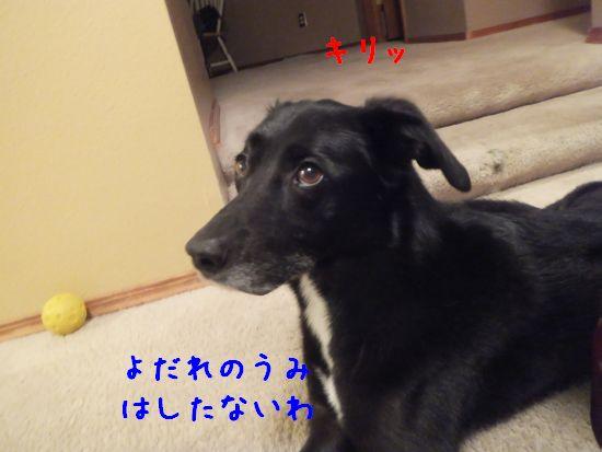 150512_02.jpg