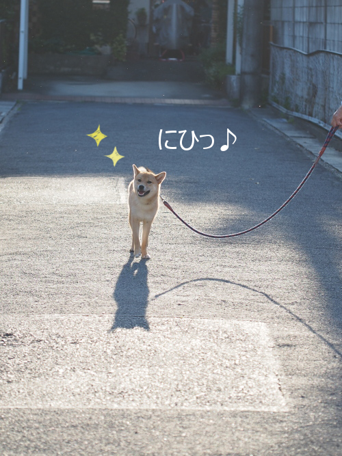 20150527-001.png