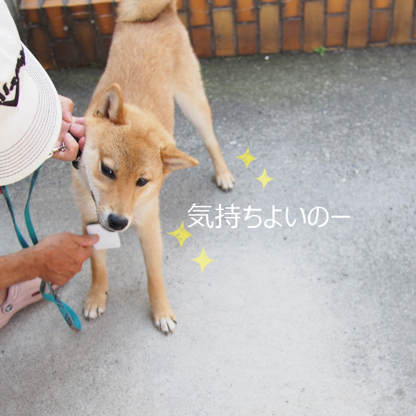 20150528-005.png