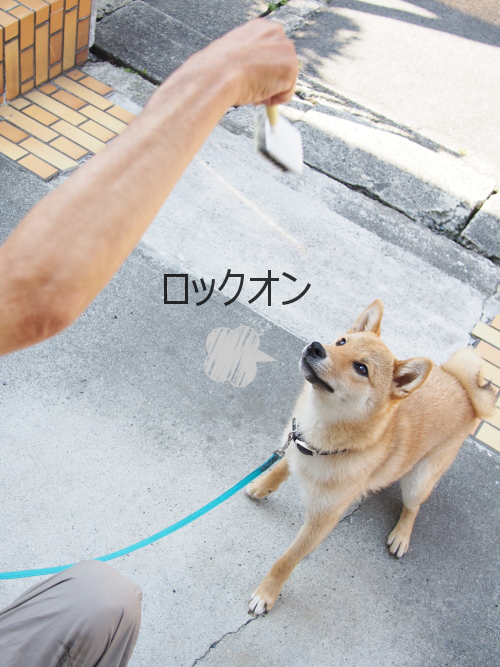 20150528-007.png