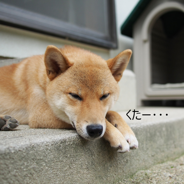 20150617-001.png