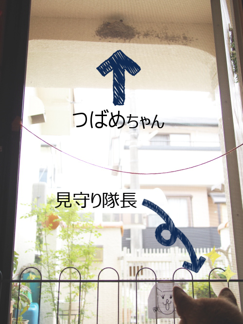 20150618-001.png