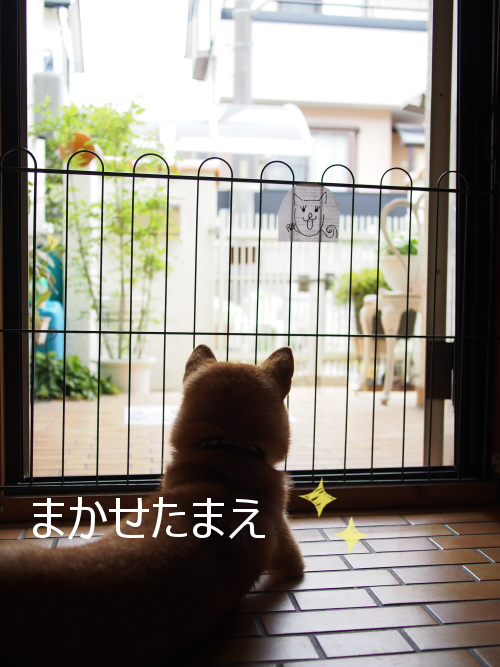 20150618-002.png