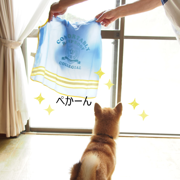 20150622-001.png