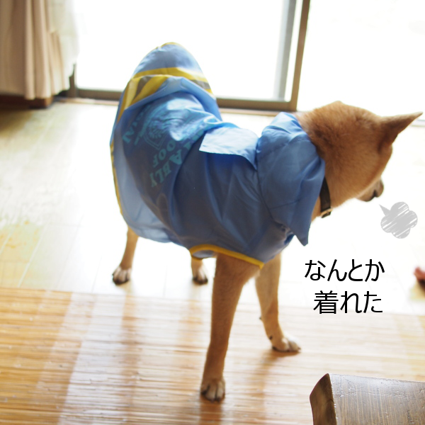 20150622-003.png