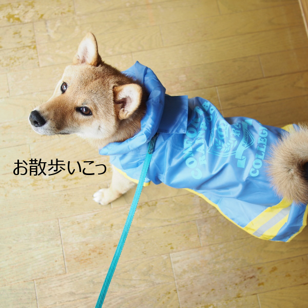 20150622-007.png