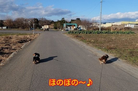 2014122712523624d.jpg