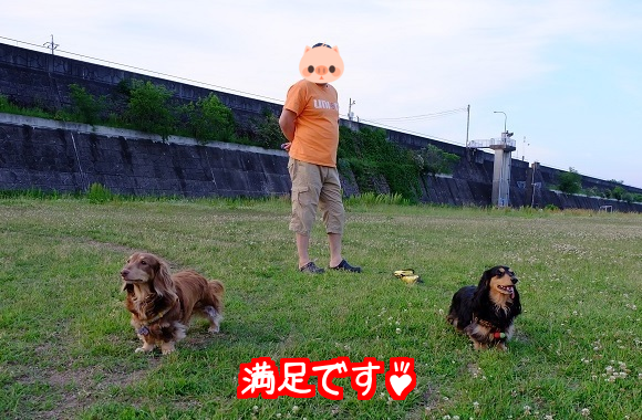 20150526002557836.png