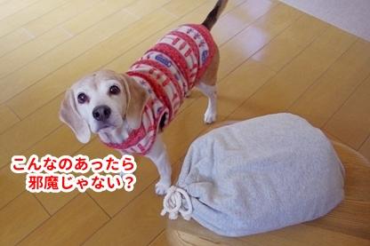 いぬんぽ 3