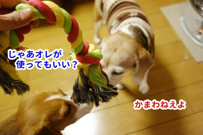 ロープ 5