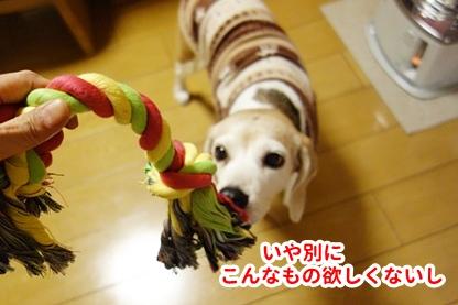 ロープ 4