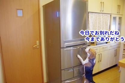 冷蔵庫 1