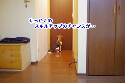 冷蔵庫 7