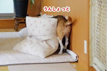 おやすみ 4