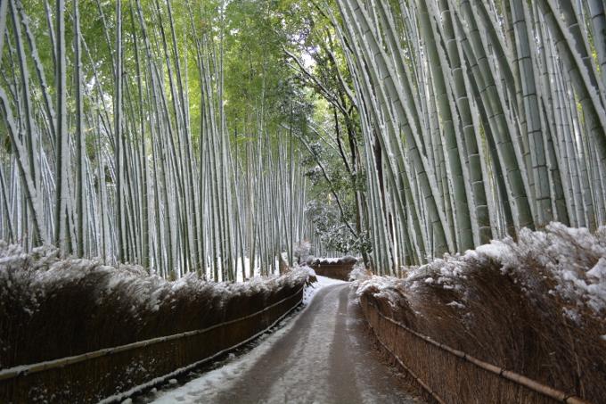 20150103嵯峨野雪景色