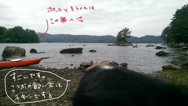 IMAG0495.jpg