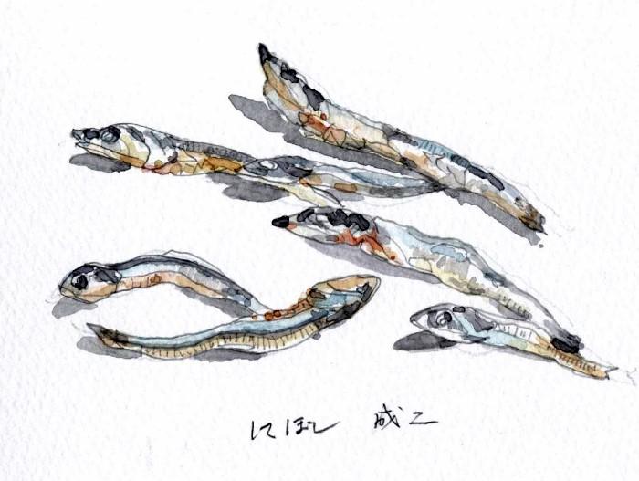 にぼし (700x527)
