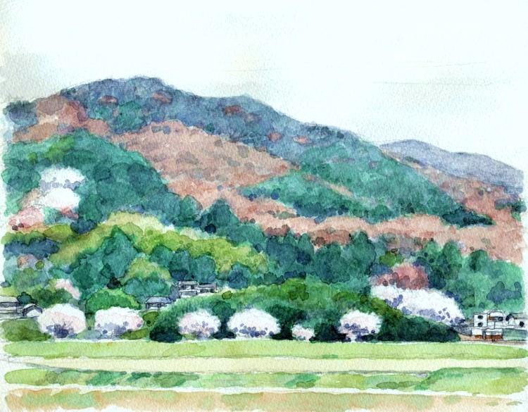 三田の郊外 (750x585)
